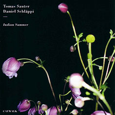 "Cover ""Indian Summer"""